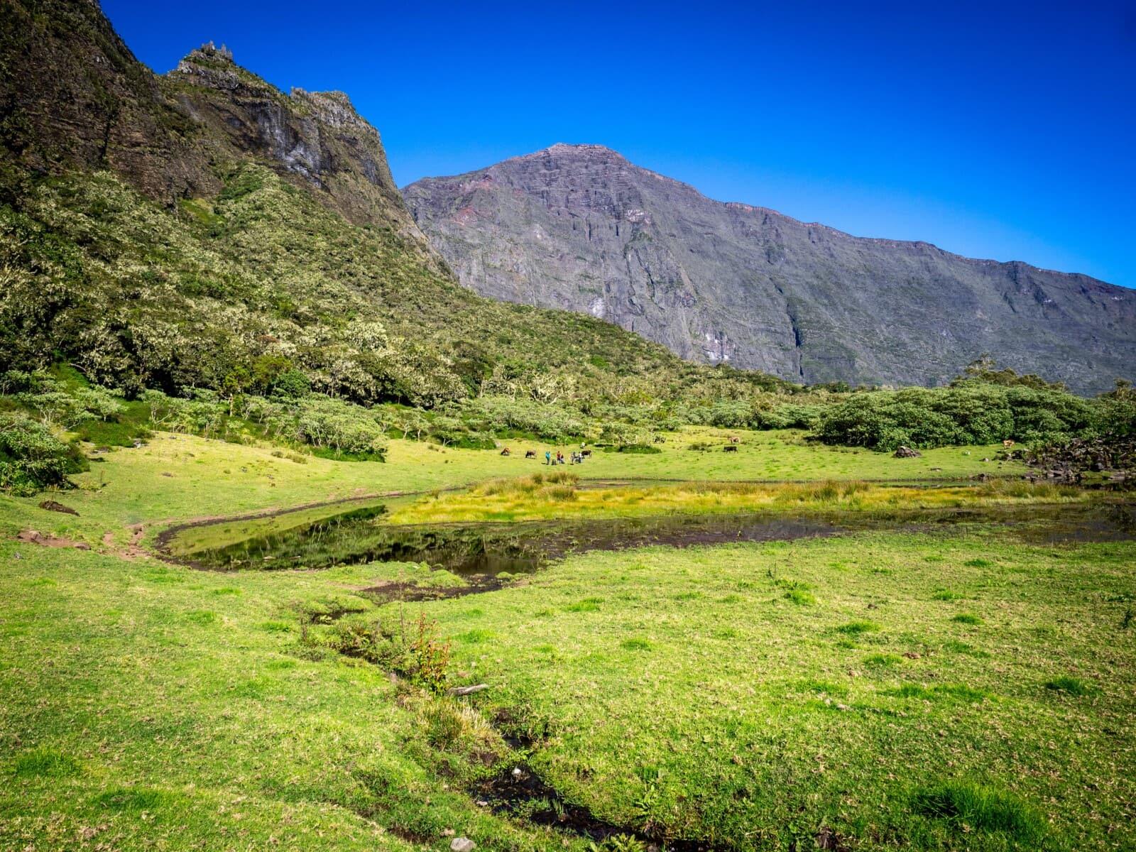 Kerval île de la Réunion