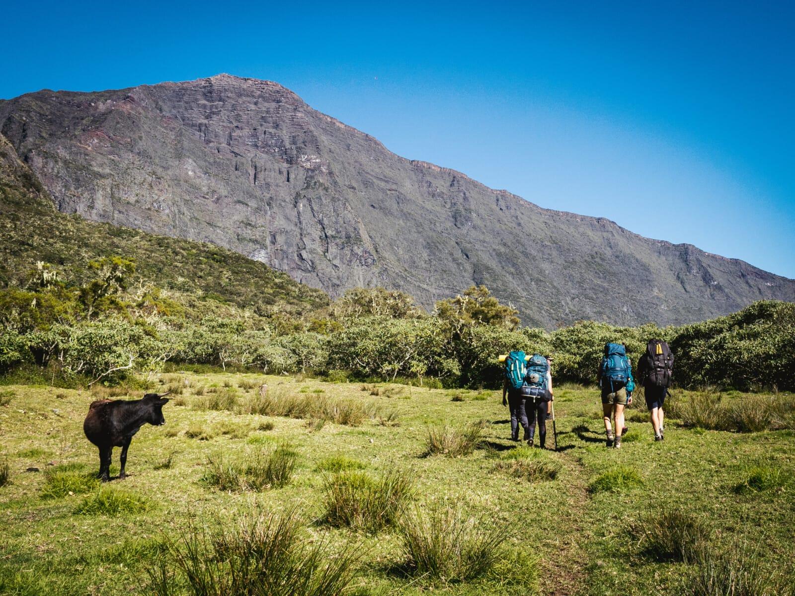 Plateau de Kerval Réunion