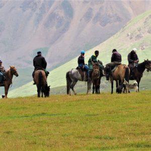 Cheval Kirghizistan