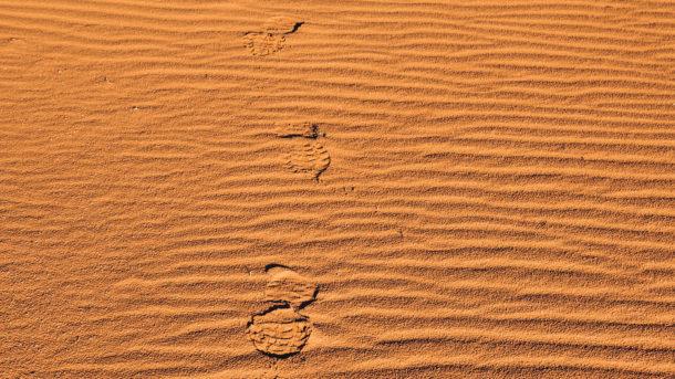 wadi rum sable couleur