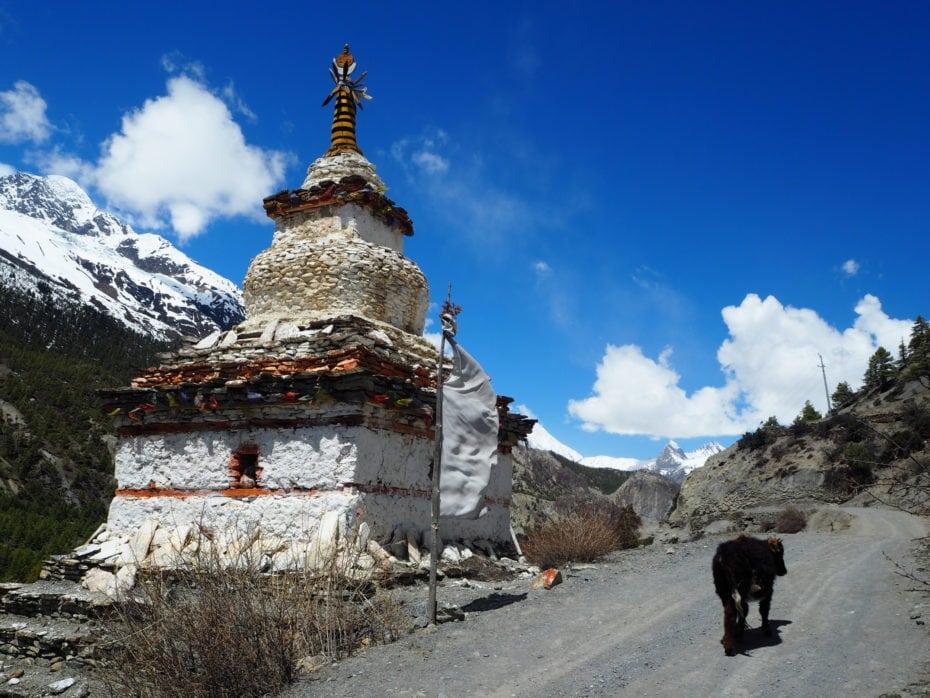 Tour des Annapurnas : Temple sur le chemin du trek des annapurna