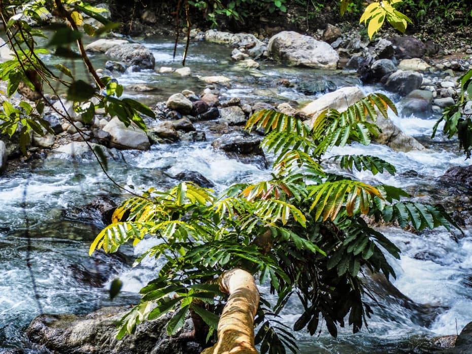 rivière jungle sumatra