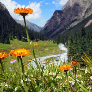 Paysages alpins au Kirghizistan