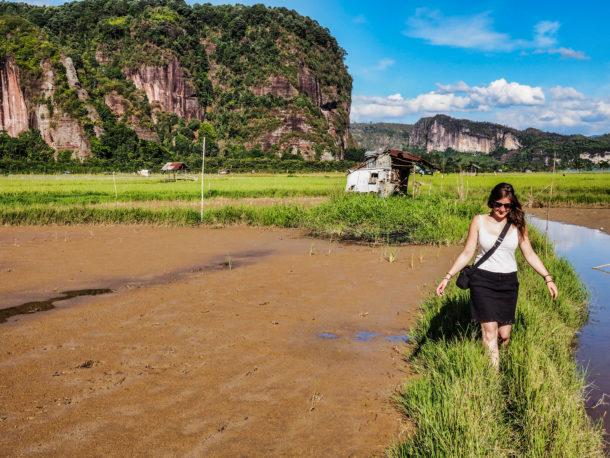 randonnée champs de riz