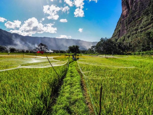 plus beaux paysages sumatra