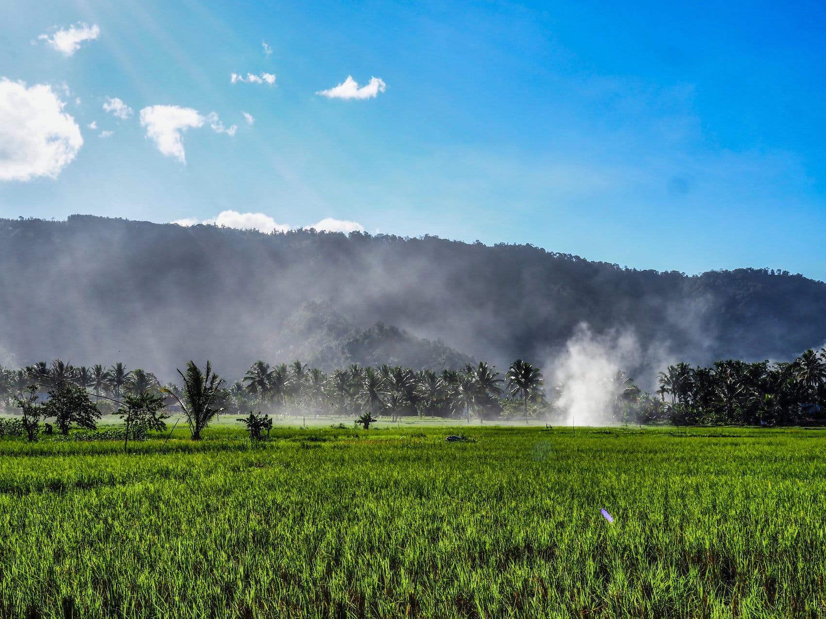 vallée Harau