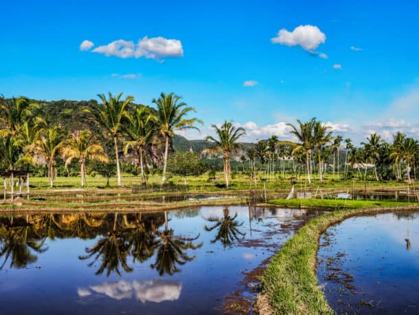 Paysage vallée d'Harau