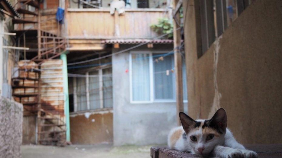 Quartier Vieux Tbilissi