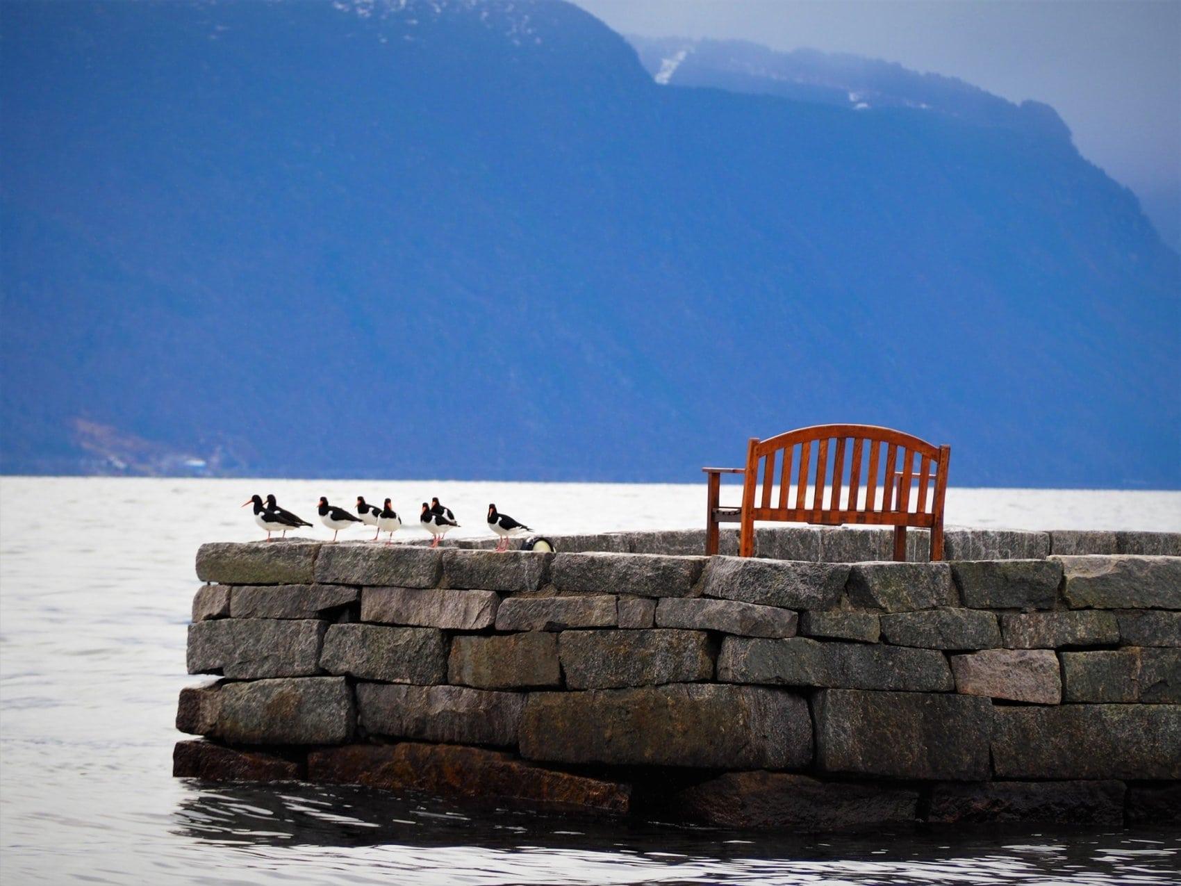 Fjord Balestrand