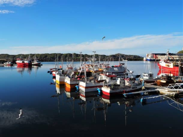 Le port de Sto permet des sorties en mer